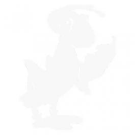 *Valymo skystis (purškiamas) Nobo, skirtas stiklinei baltai magnetinei lentai, 150ml (P)