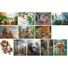 Tapybos rinkinys deVENTE Fauna, 40x50cm, įvairių spalvų