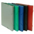Dėklas dokumentams College Sand, A4, 13 skyrelių, su gumelėmis, plastikinis, įvairių spalvų