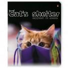 Sąsiuvinis A5, langeliais, 48 lapų, Cats