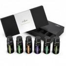 Anjou Essential Oil Gift Set (6 pcs. x 10 ml)
